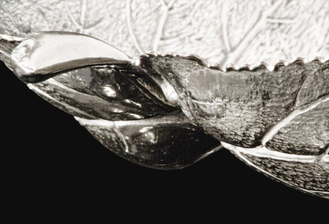 Bombonato-argenteria-foglie-quercia-in-argento-buccellati-05