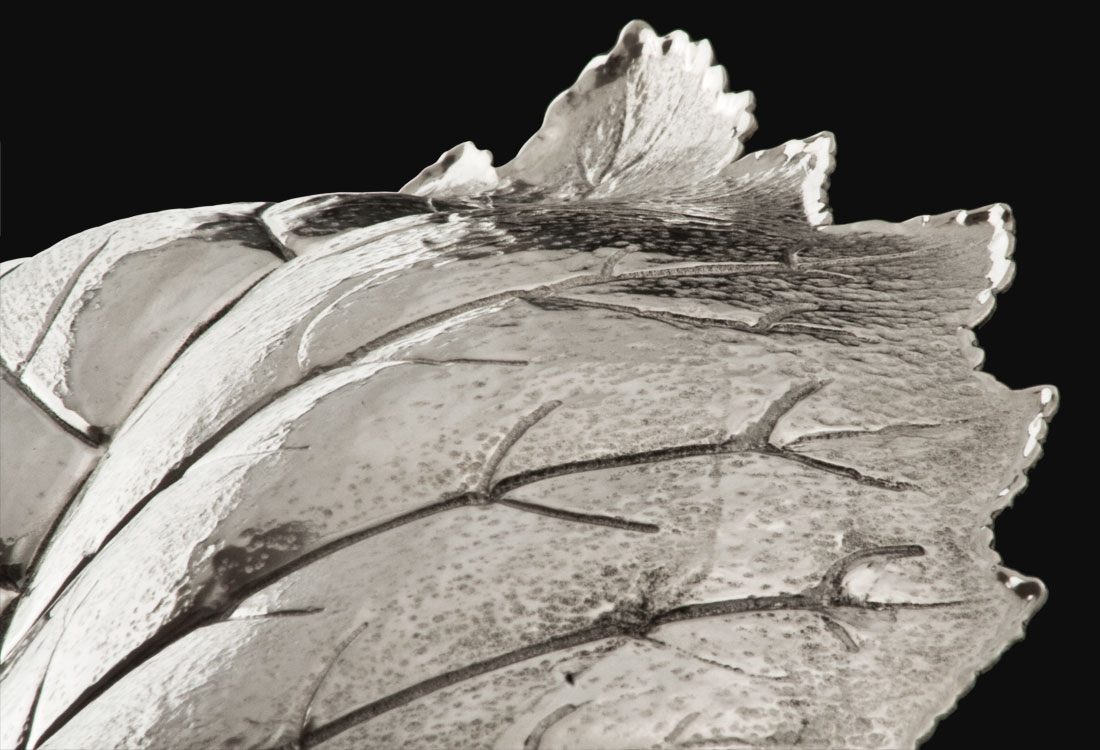 Bombonato-argenteria-foglie-quercia-in-argento-buccellati-06